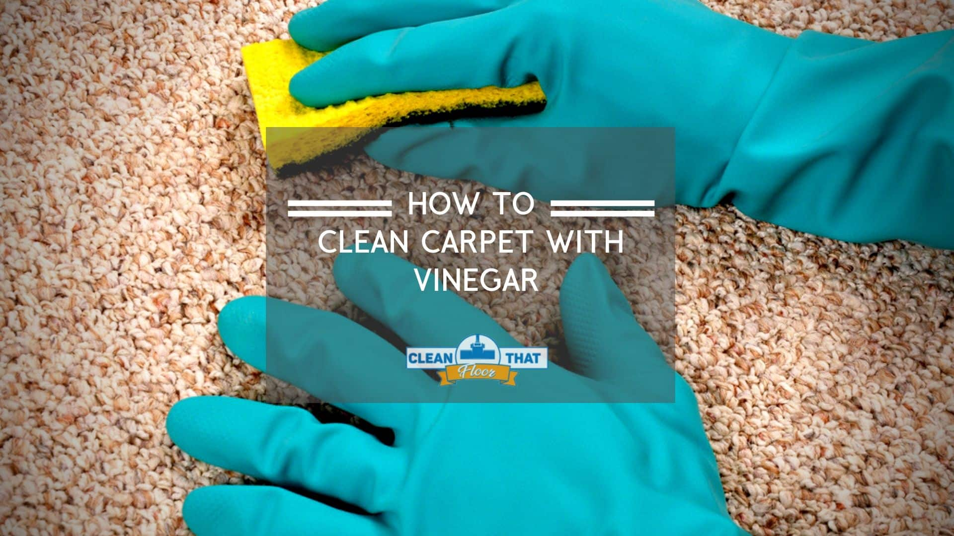 Image of cleaning a carpet with vinegar
