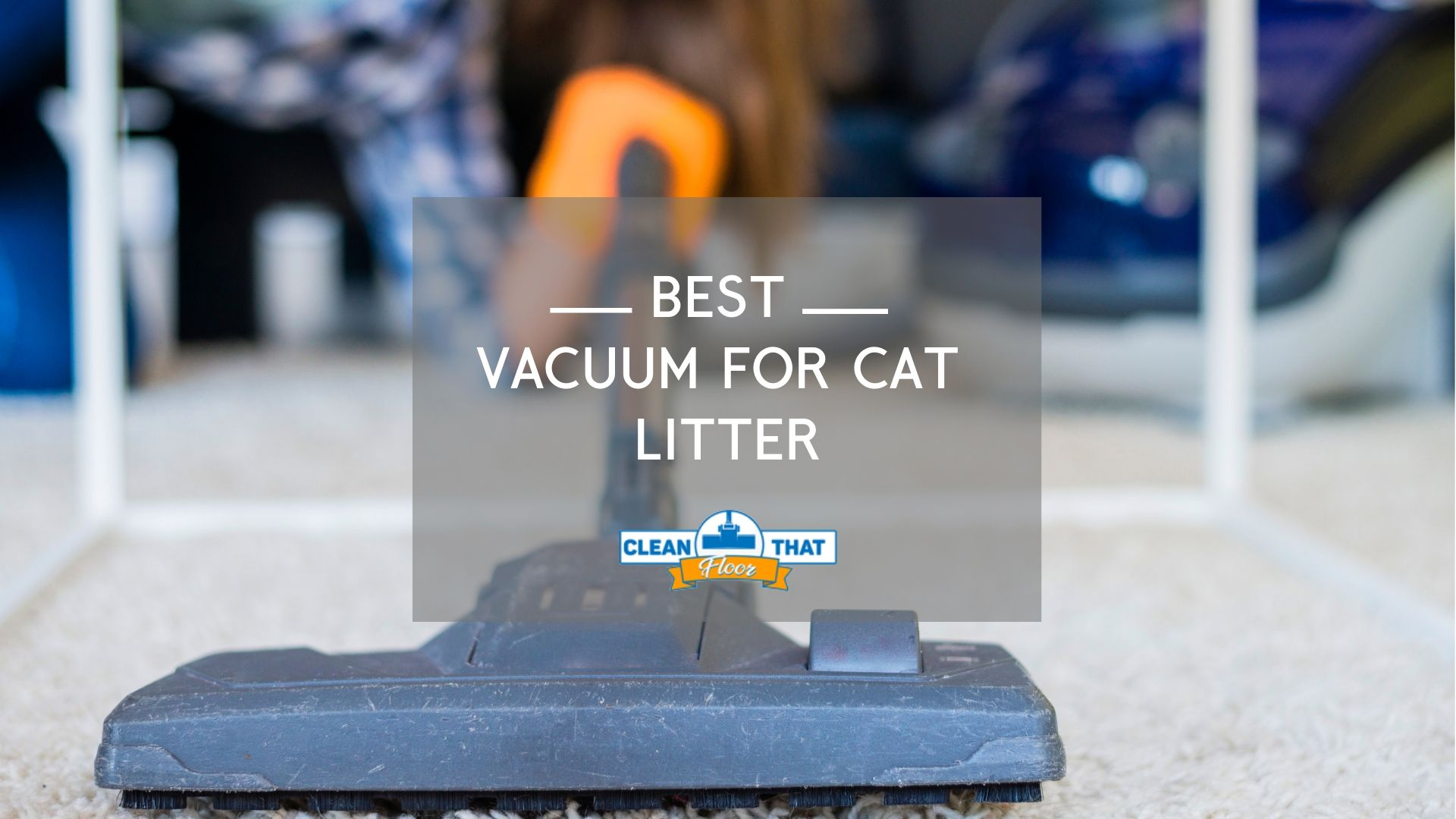 Photo of Best Vacuum For Cat Litter