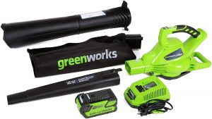 Greenworks Cordless Leaf Blower/Vacuum