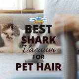 The 10 Best Shark Vacuum for Pet Hair