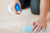 How to Get Human Urine Smell Out of Carpet